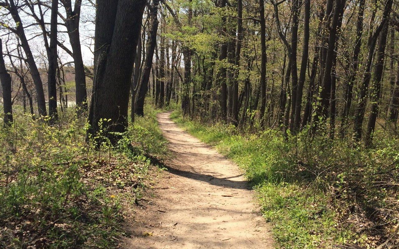 AWAYN IMAGE Hike to Cowles Bog Trail