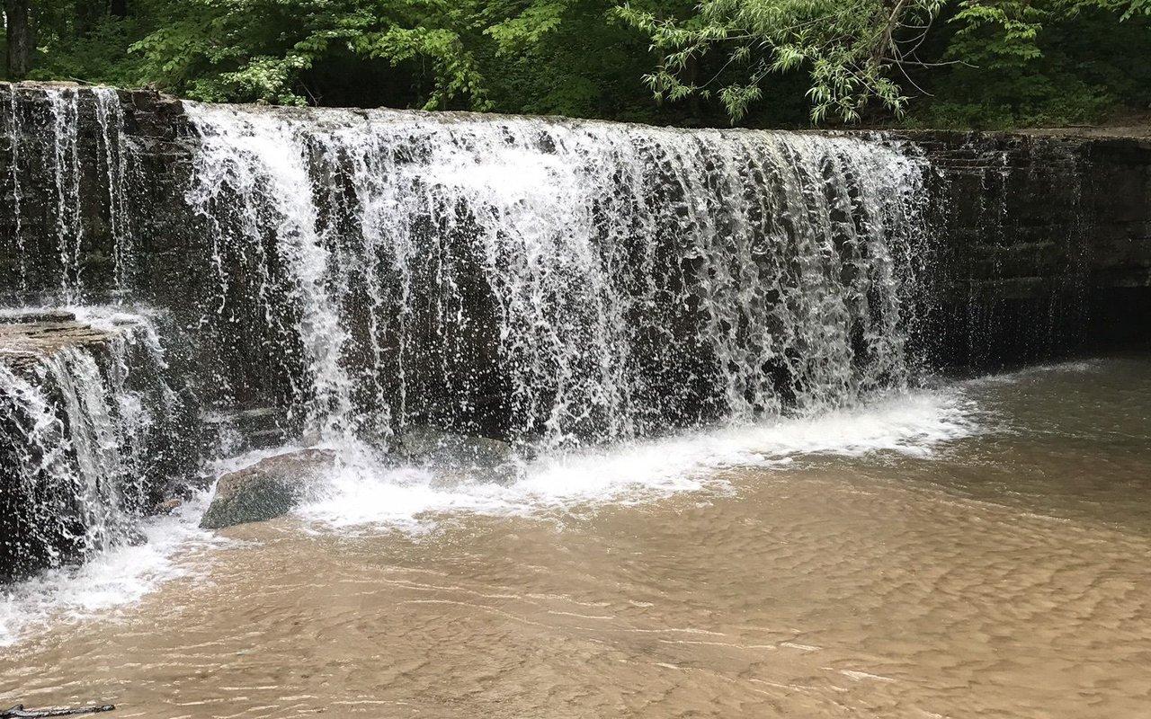 AWAYN IMAGE Nerstrand Big Woods State Park Trails Loop