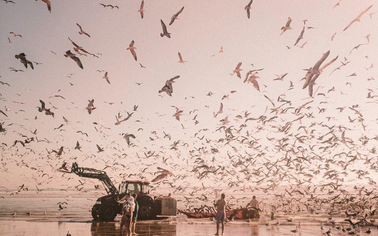 AWAYN IMAGE Visit Costa de Caparica