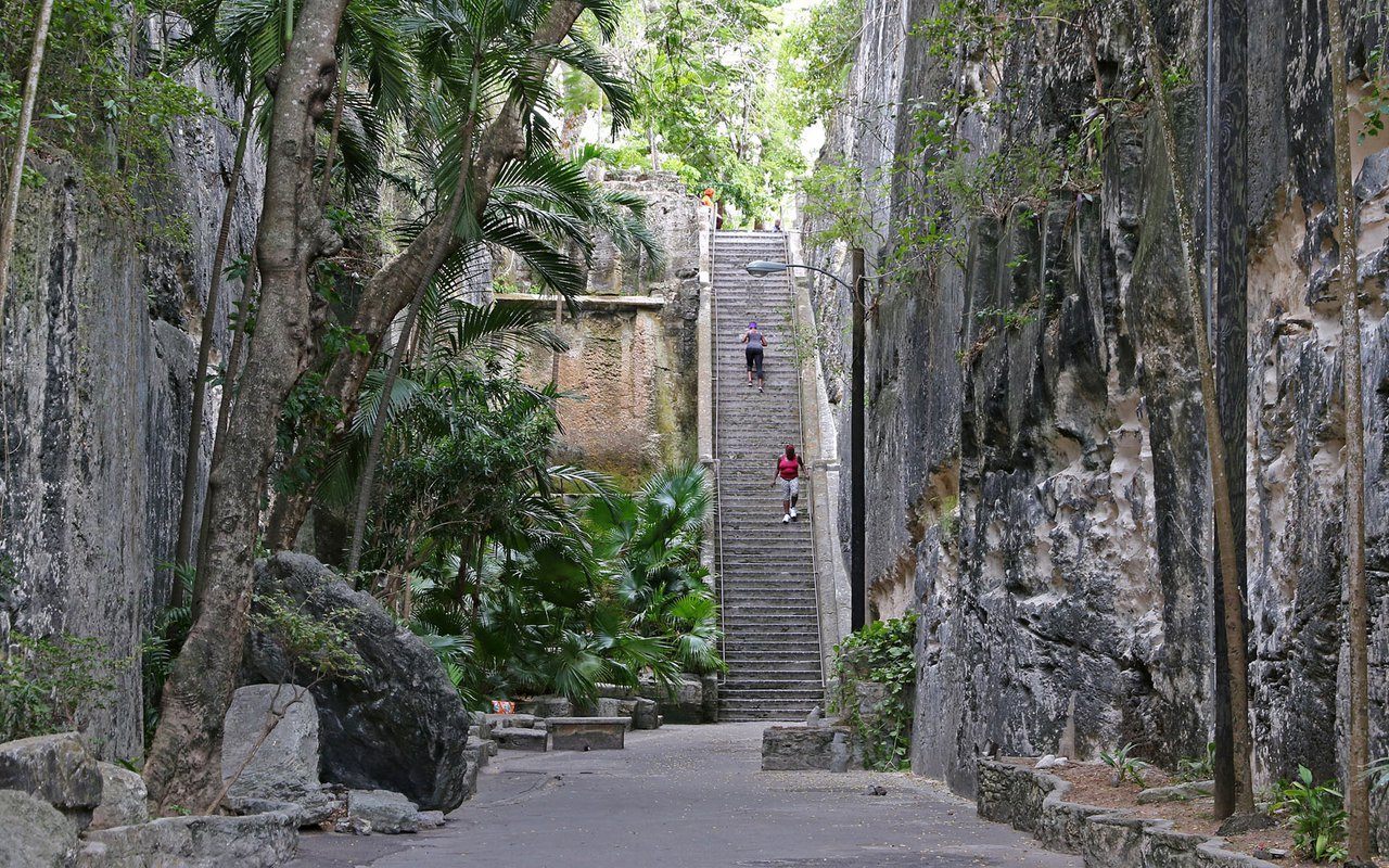 AWAYN IMAGE Walk up the Queen's Staircase Bahamas