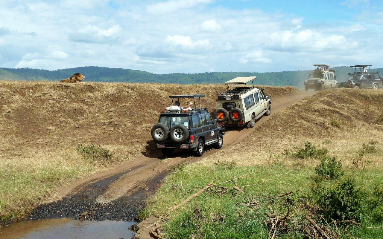 AWAYN IMAGE Explore the Ngorongoro Crater