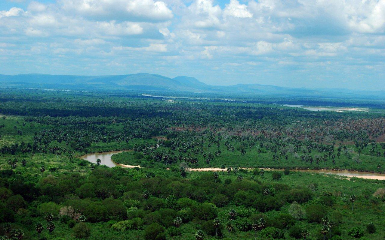 AWAYN IMAGE Explore Selous Game Reserve