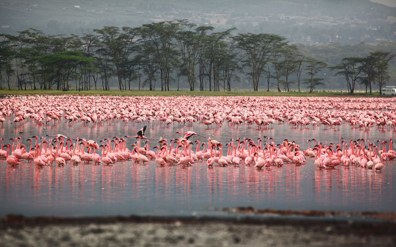 AWAYN IMAGE Hike around the Lake Nakuru
