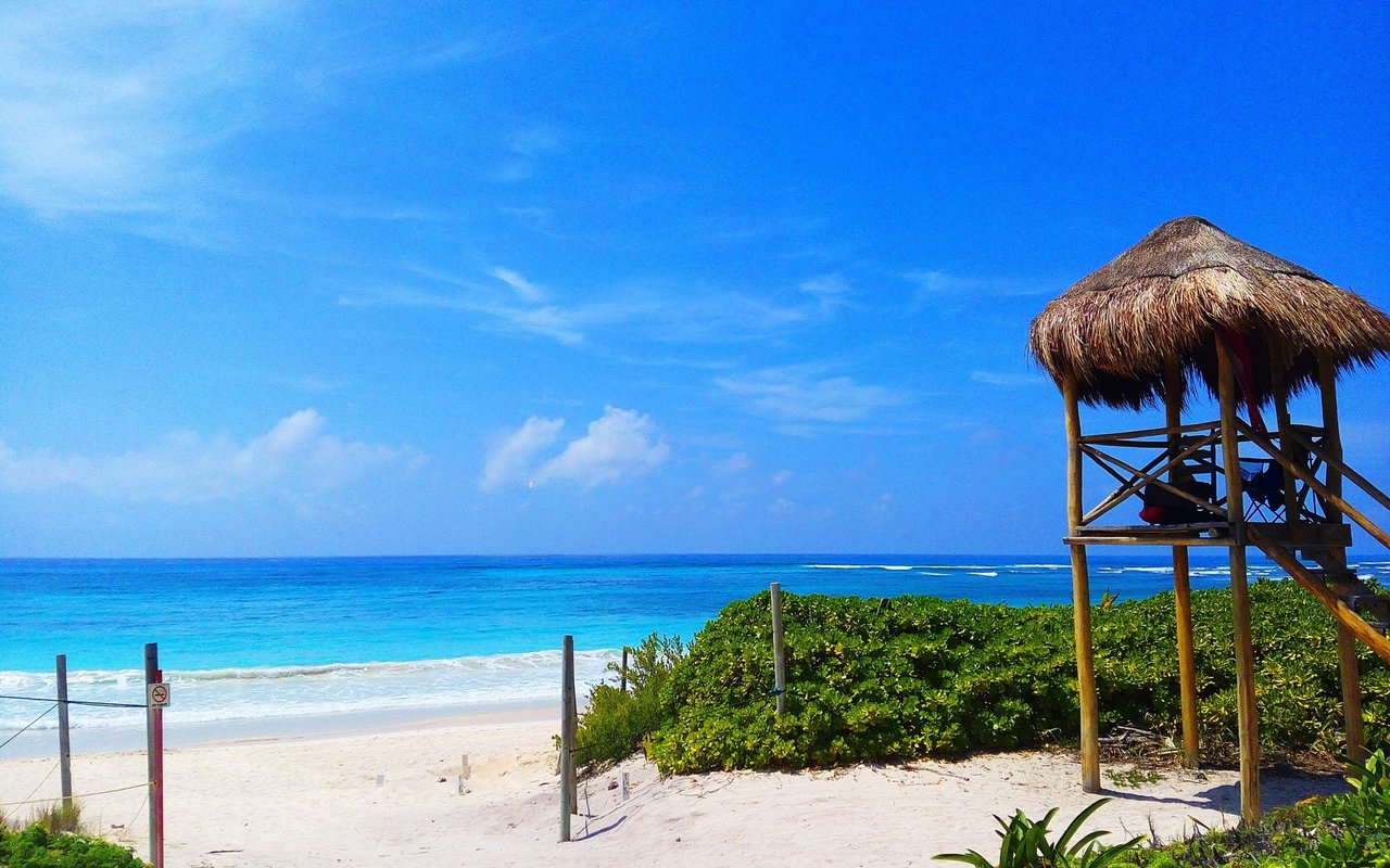 AWAYN IMAGE Swim in Xcacel beach