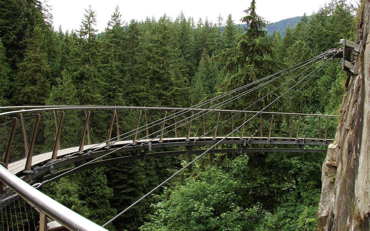 AWAYN IMAGE Capilano Suspension Bridge Park