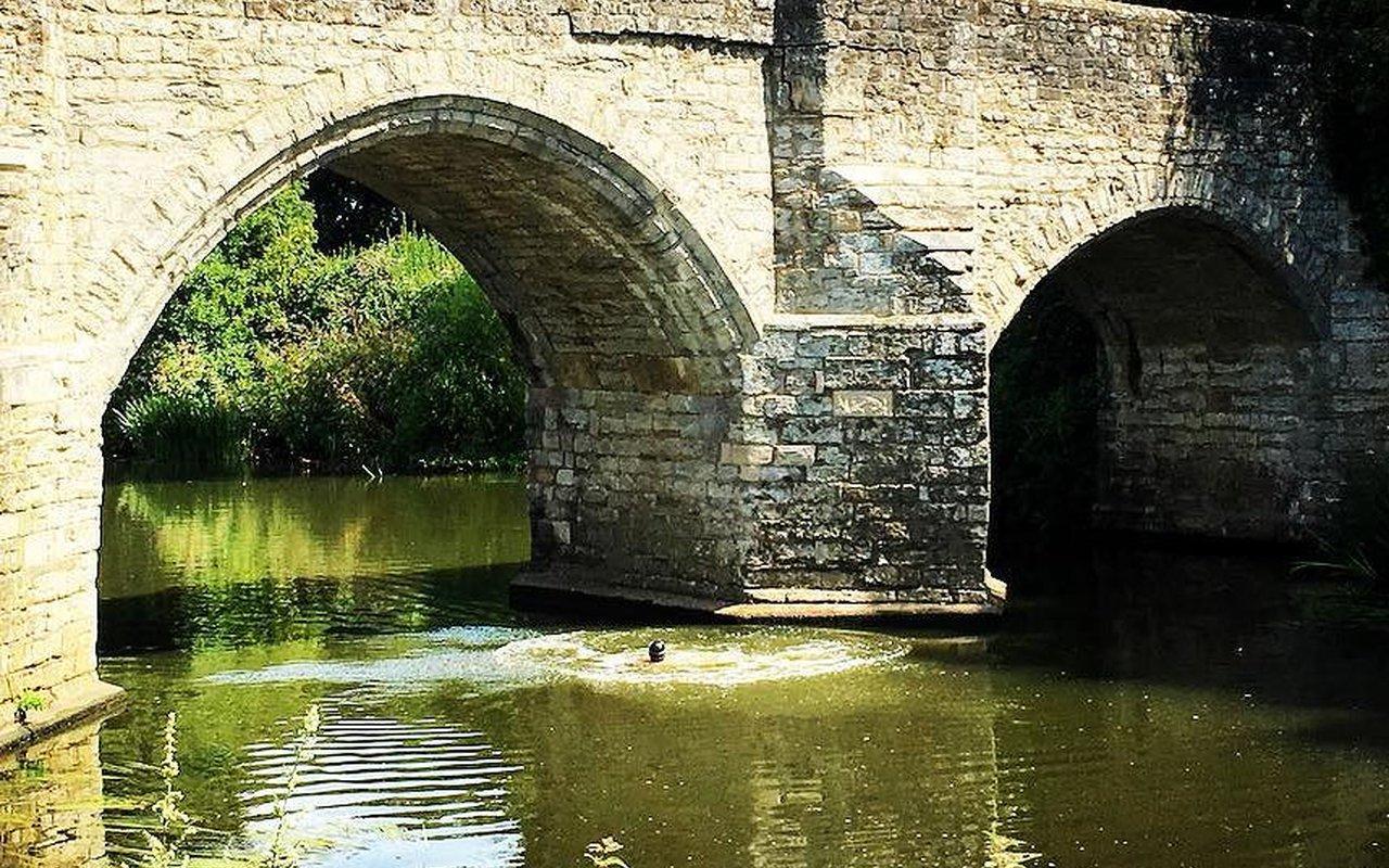 AWAYN IMAGE Teston Bridge Country Park