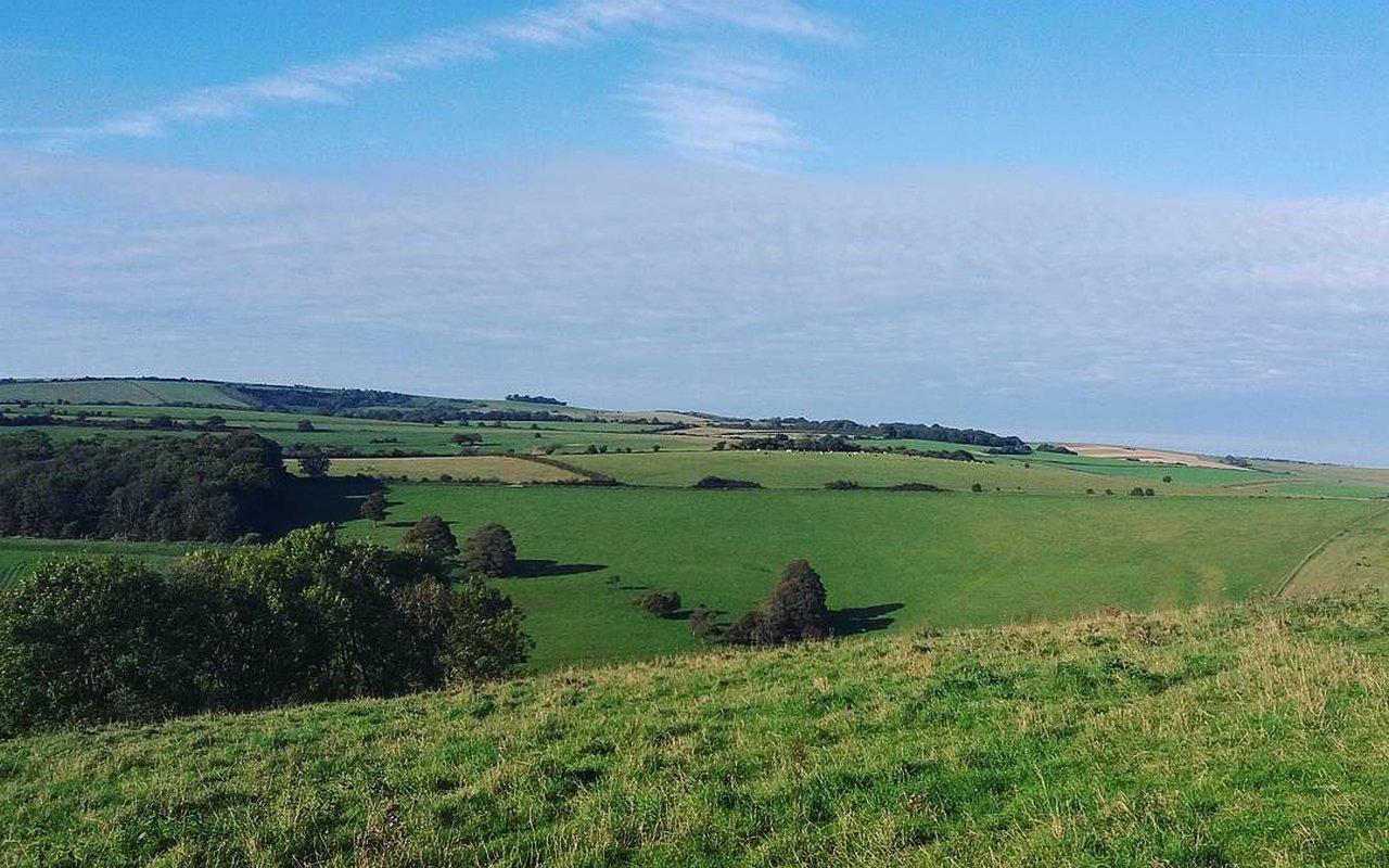 AWAYN IMAGE Good long or short climb to Cissbury Ring