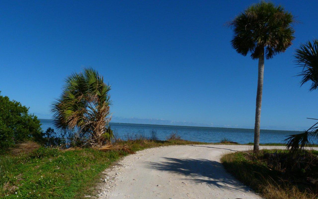 AWAYN IMAGE Beach day at Canaveral National Seashore
