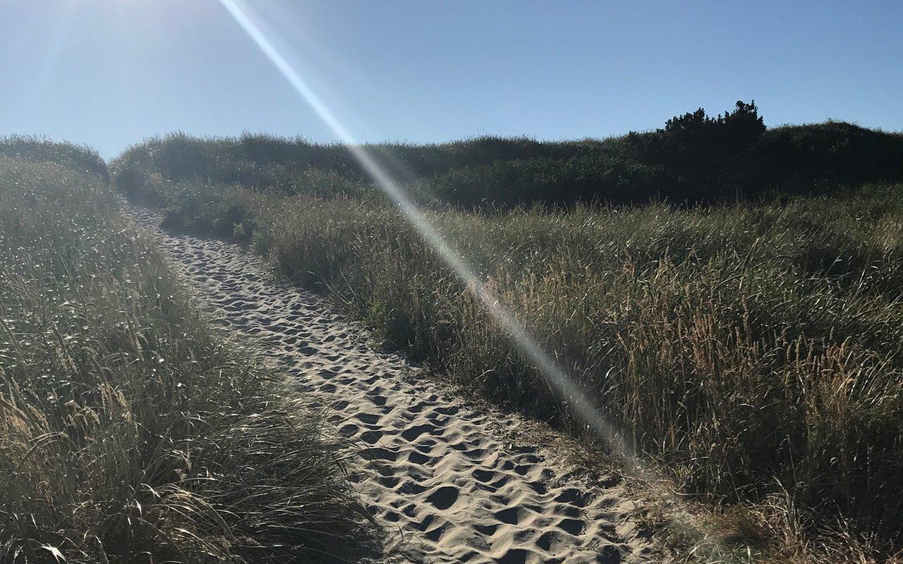 AWAYN IMAGE South Beach State Park
