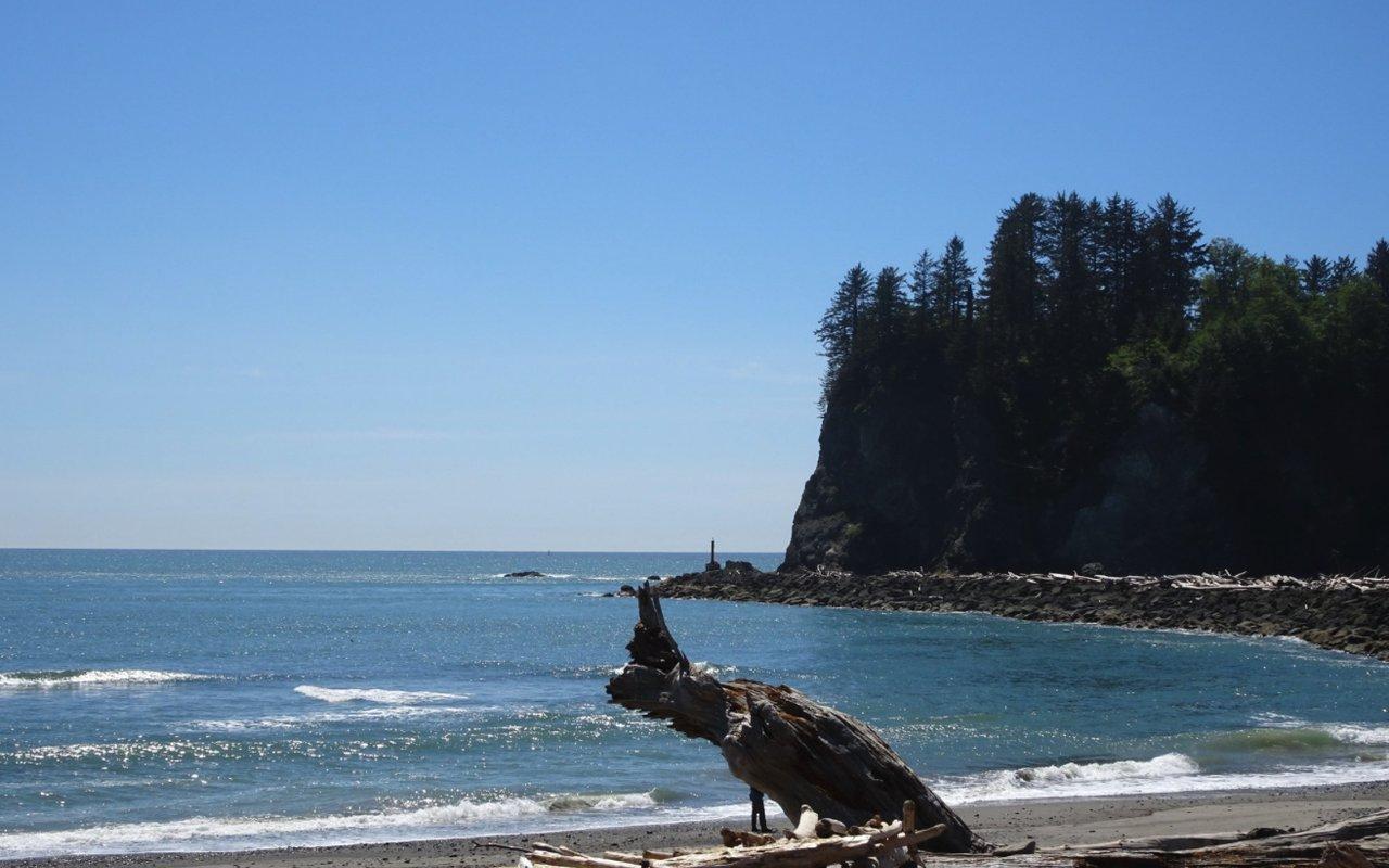 AWAYN IMAGE First beach in La Push