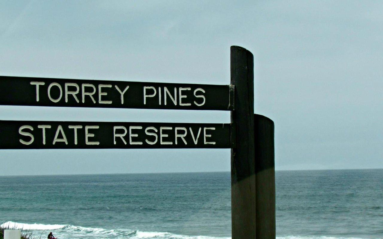 AWAYN IMAGE Surfing in Torrey Pines State Reserve