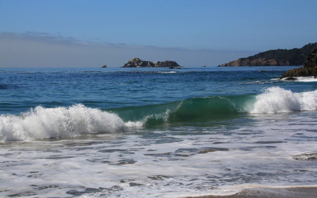 AWAYN IMAGE Cooks Beach Surf