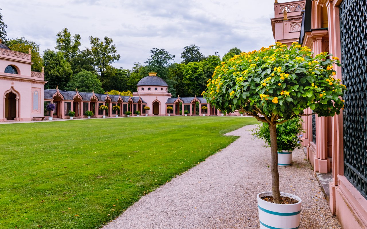 AWAYN IMAGE Pink Mosque in Schwetzingen