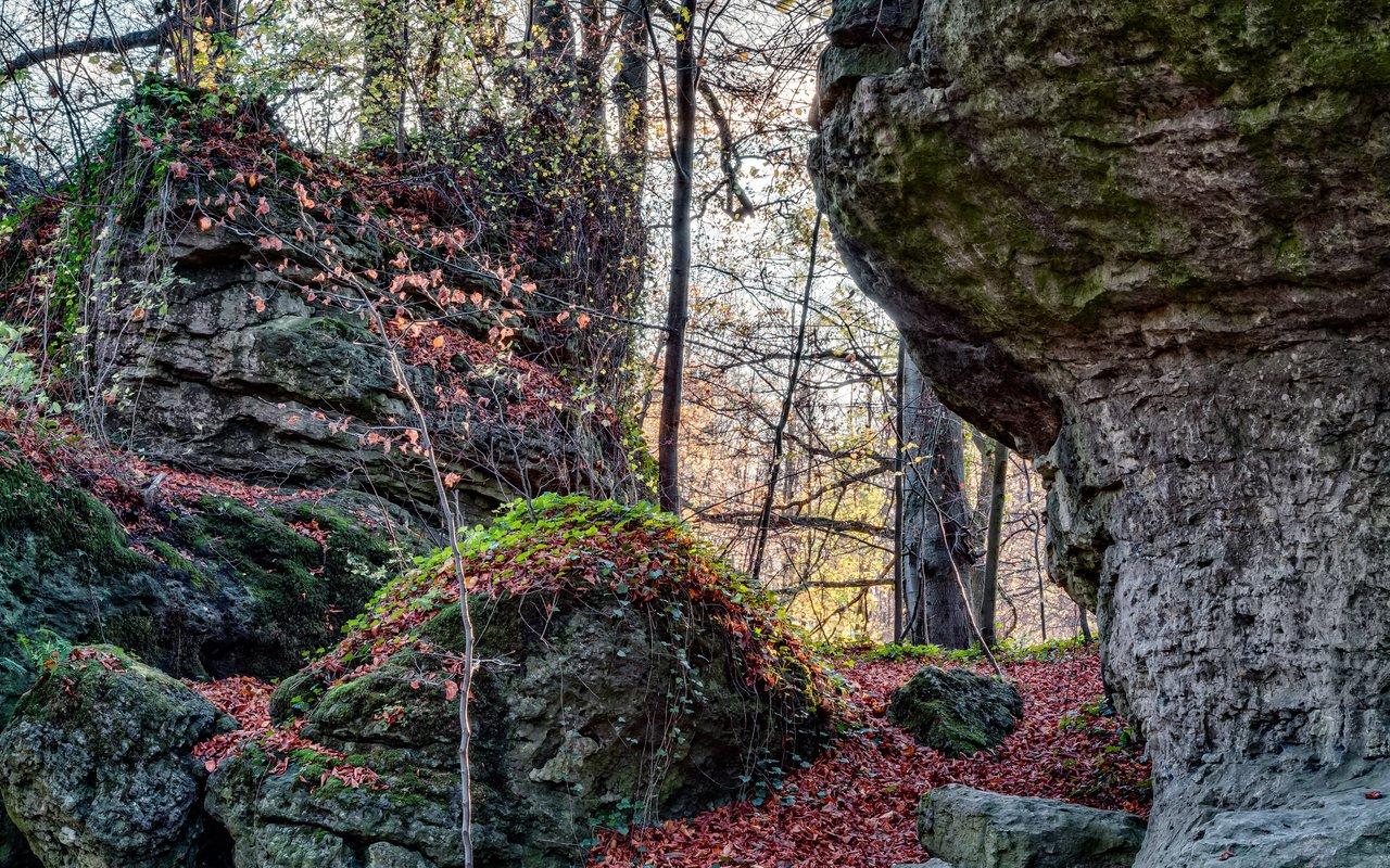 AWAYN IMAGE Sanspareil Rock Garden