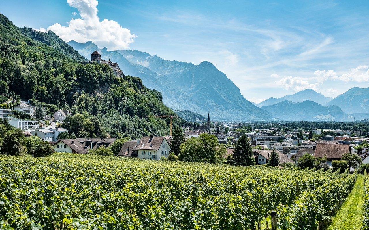 AWAYN IMAGE Lichtenstein Castle