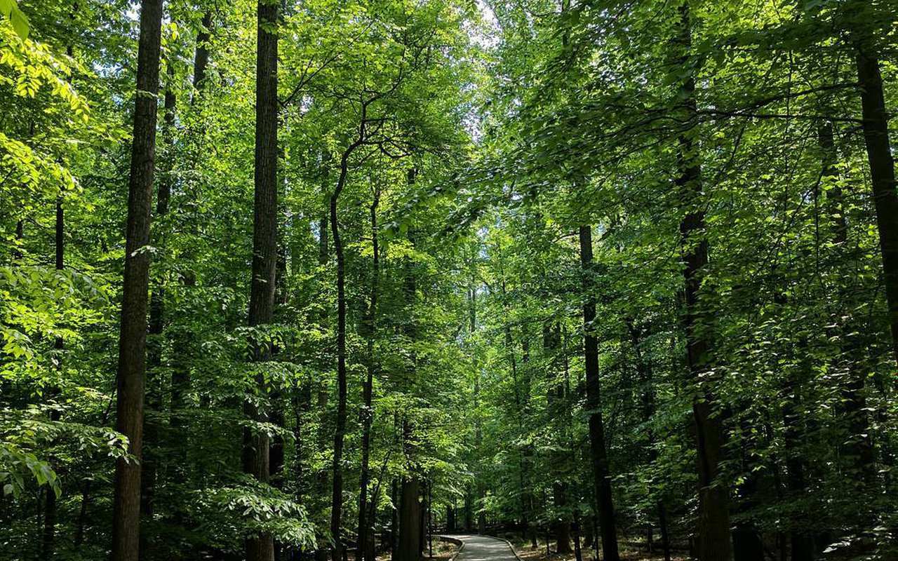 AWAYN IMAGE Matthew Henson State Park Trail