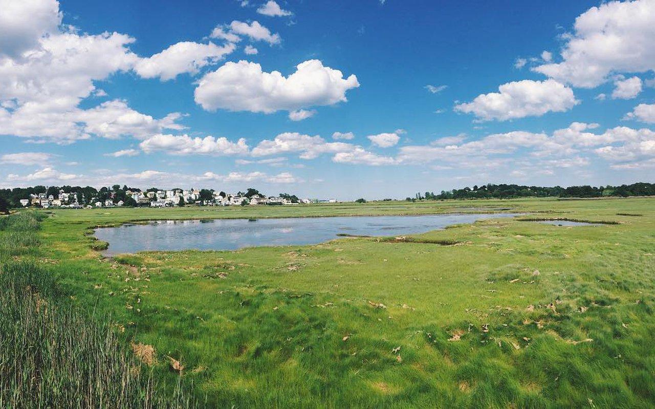 AWAYN IMAGE Belle Isle Marsh Reservation