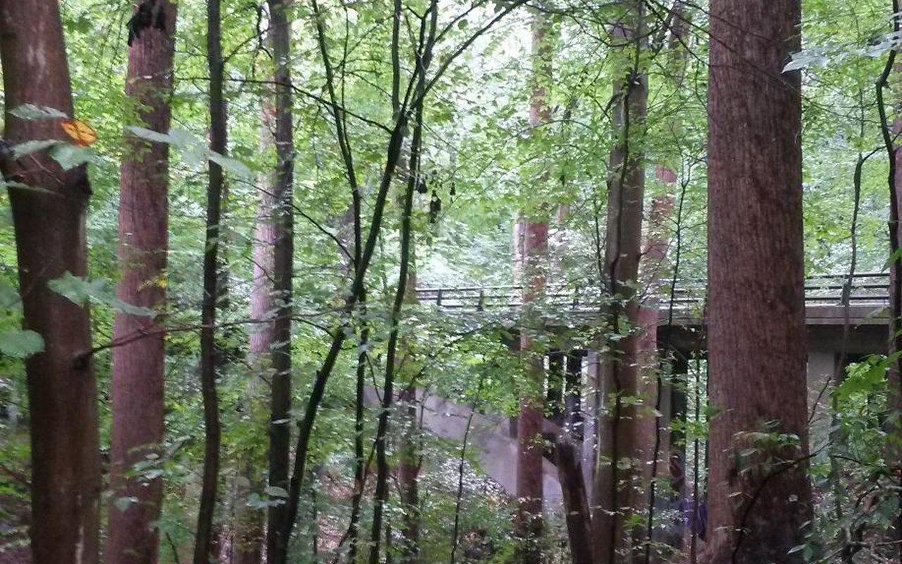 AWAYN IMAGE Rock Creek Park Historical Loop