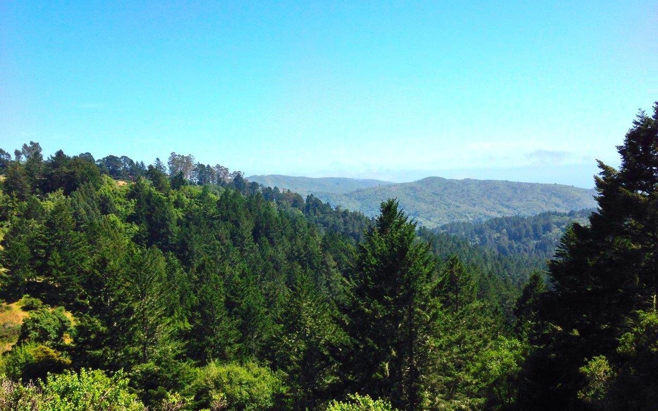 AWAYN IMAGE Mt. Tamalpais Hike