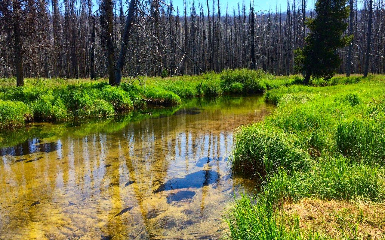 AWAYN IMAGE Hike in Loon Lake area