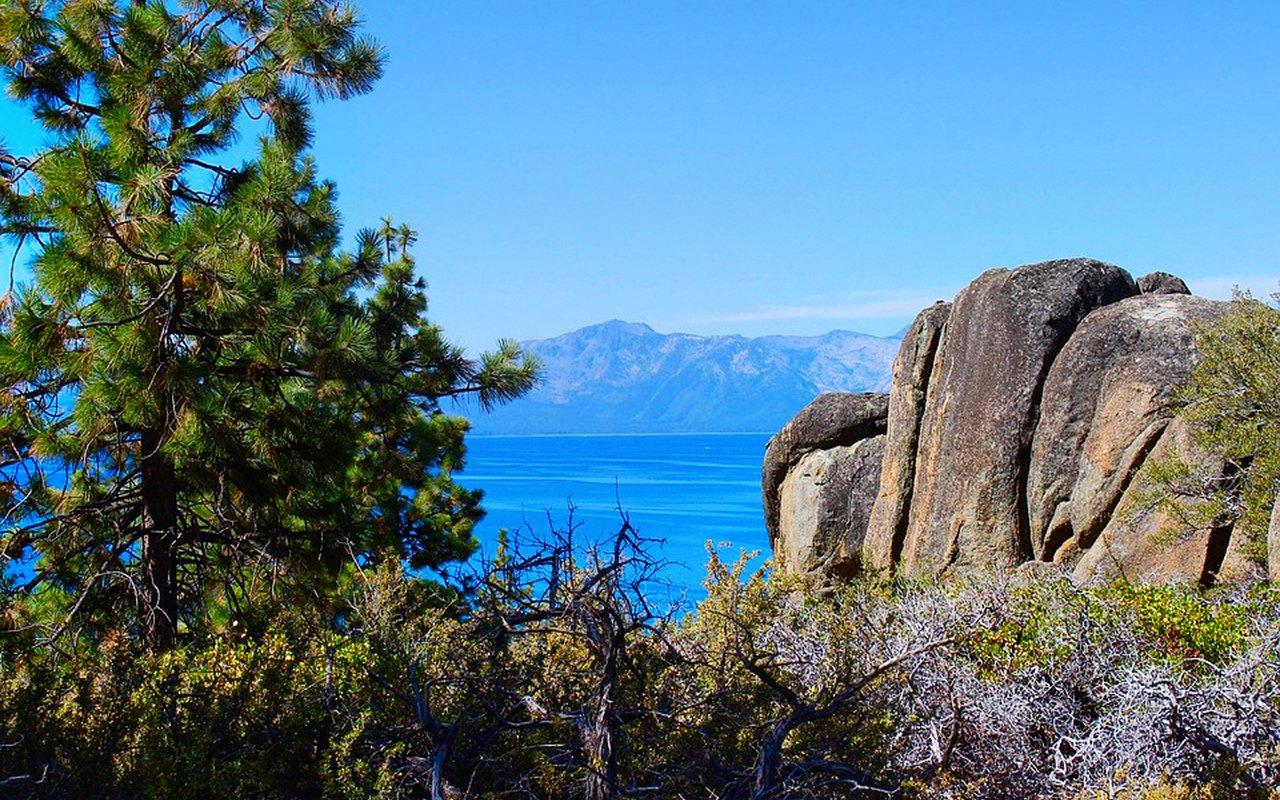 AWAYN IMAGE Chill and snap a photo at Bonsai Rock