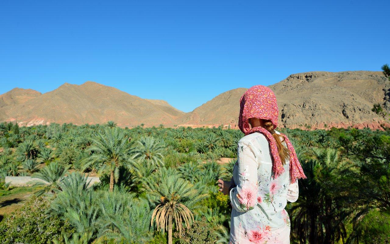 AWAYN IMAGE Dates plantations Garmeh