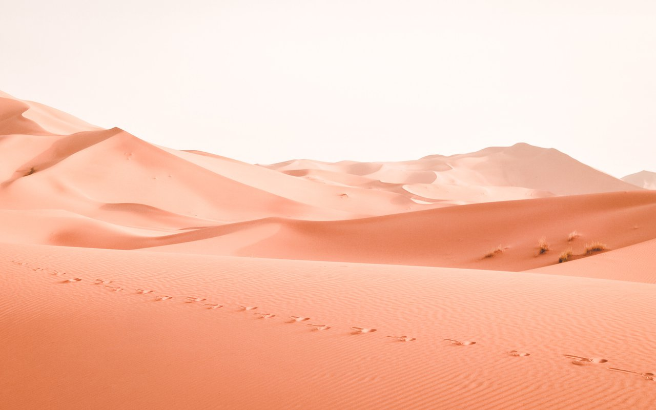 AWAYN IMAGE Camel riding Erg Chebbi, Morocco