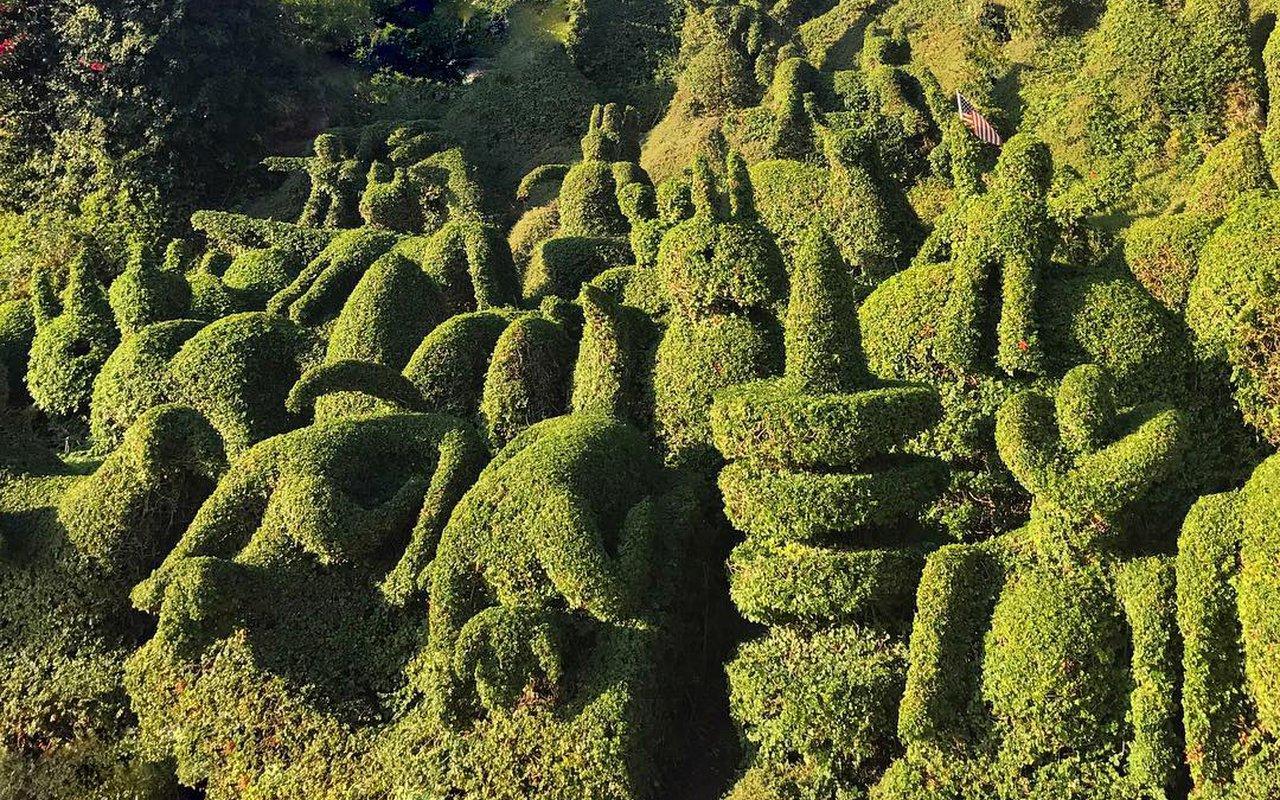 AWAYN IMAGE Take selfie in Harper's Topiary Garden