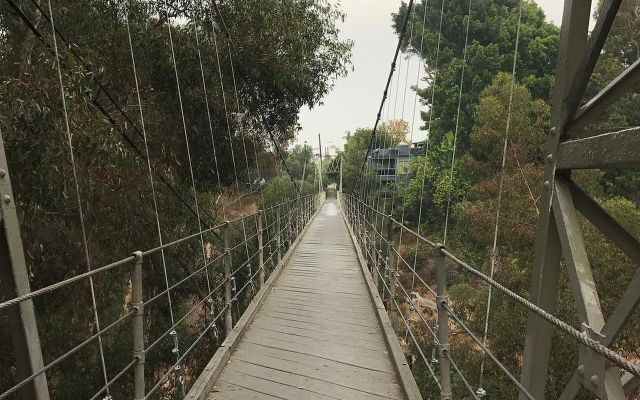 AWAYN IMAGE Take a photos in Spruce Street Suspension Bridge