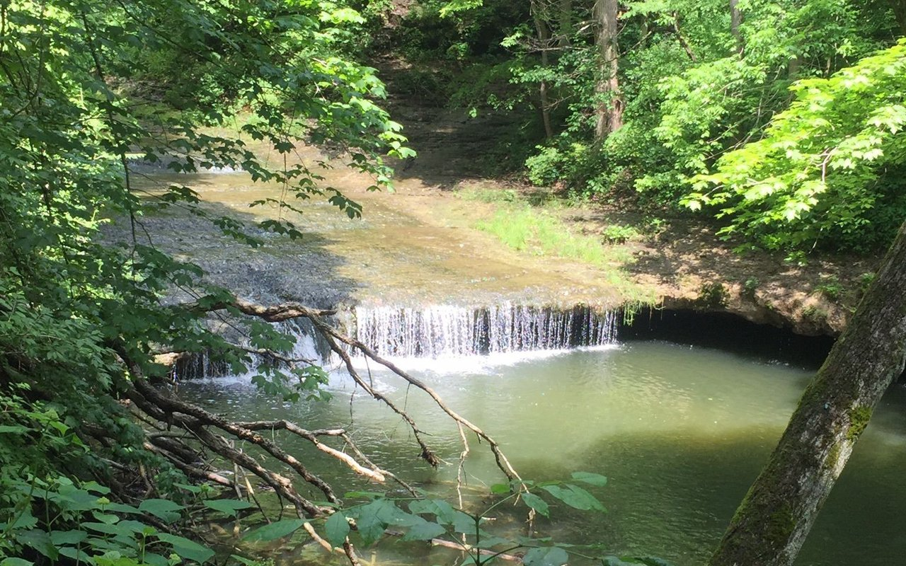 AWAYN IMAGE Chestnut Ridge Trail Pickerington Ponds Metro Park