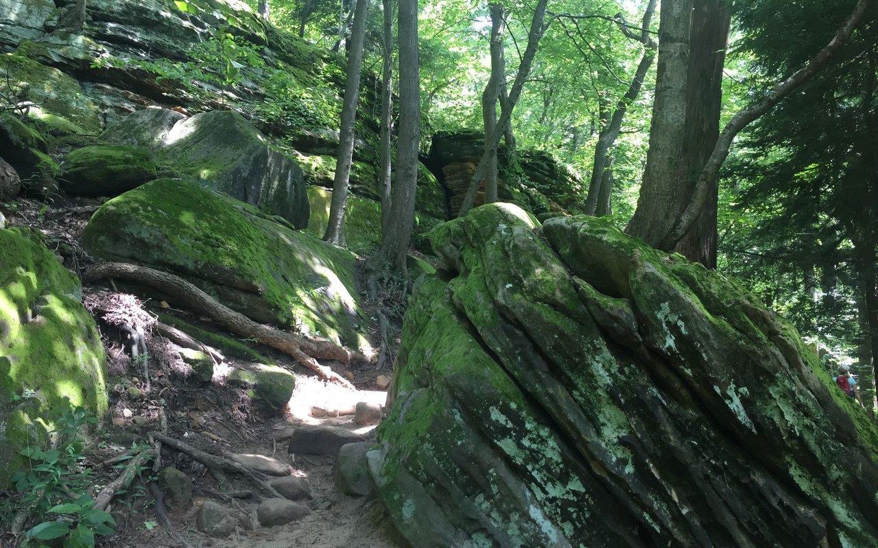 AWAYN IMAGE Ledges Trail Cuyahoga River National Park