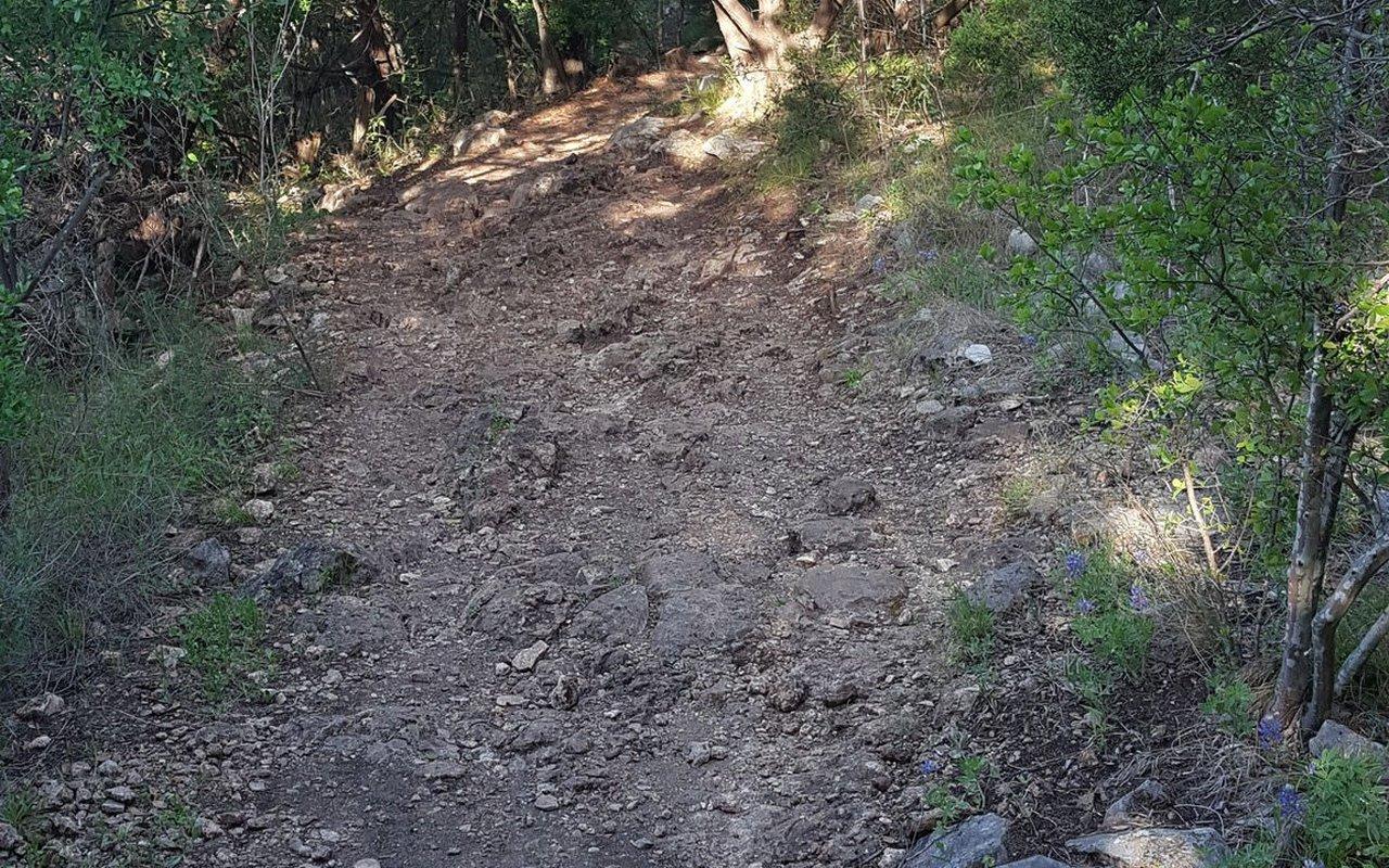AWAYN IMAGE Purgatory Creek Natural Area