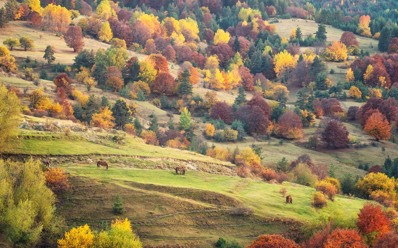 AWAYN IMAGE Rhodope Mountain