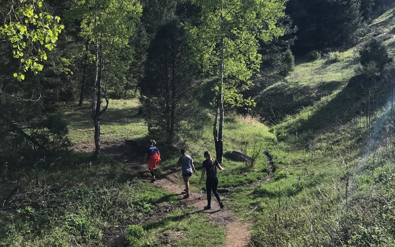 AWAYN IMAGE Hike at Chavez and Beaver Brook Trail Loop