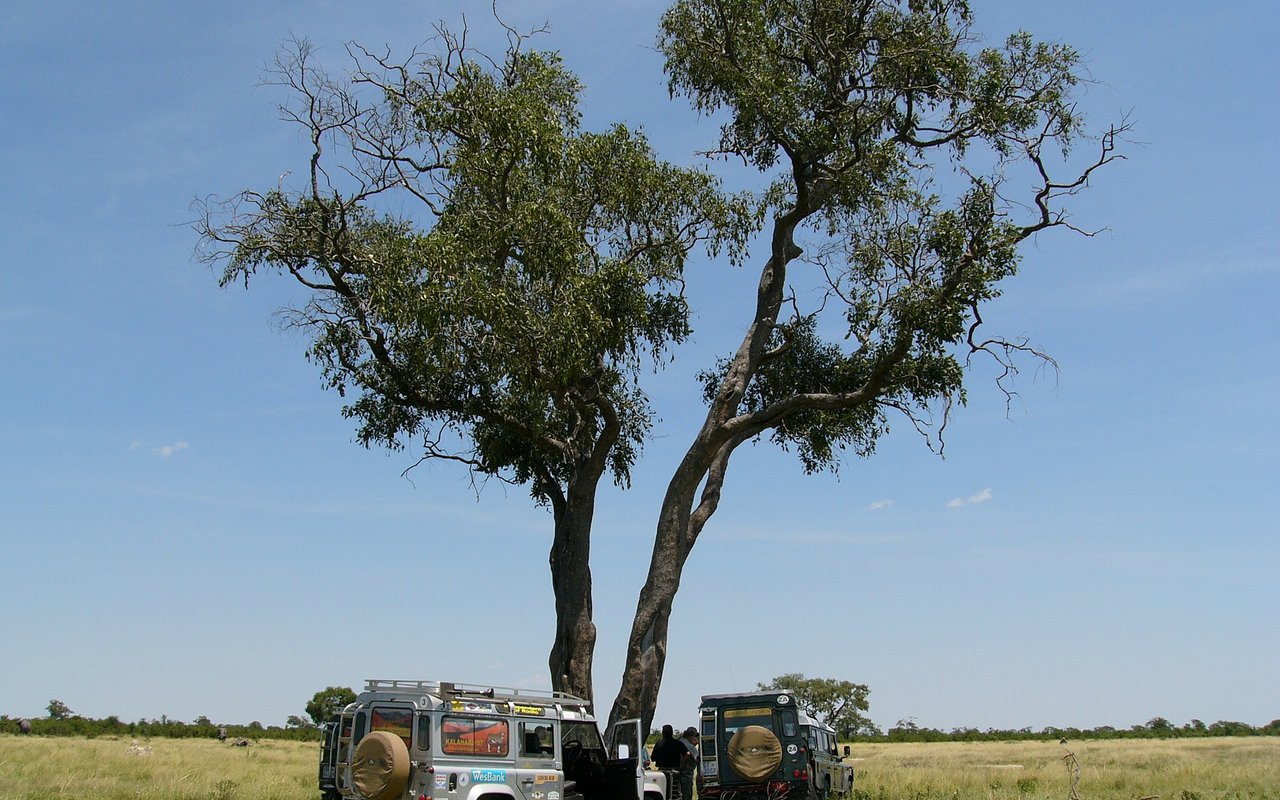 AWAYN IMAGE Overlanding the beautiful Botswana in Africa
