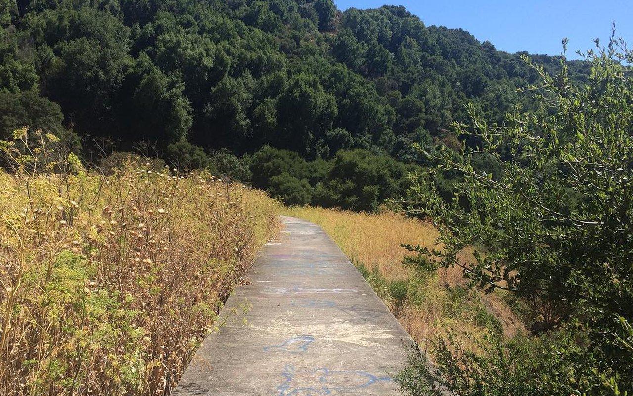 AWAYN IMAGE Secret Sidewalk hike/photo