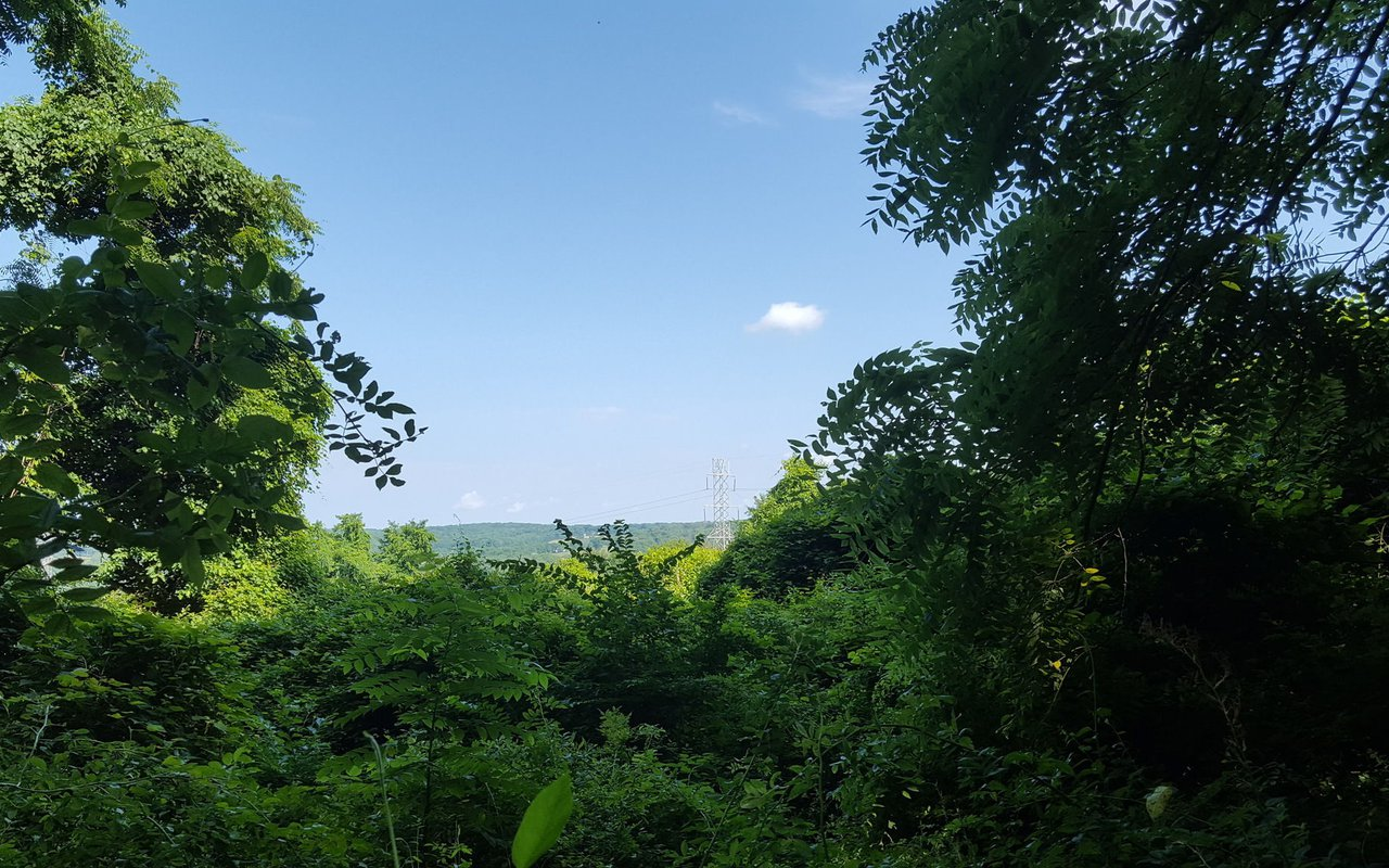 AWAYN IMAGE Ted Stiles Preserve at Baldpate Mountain
