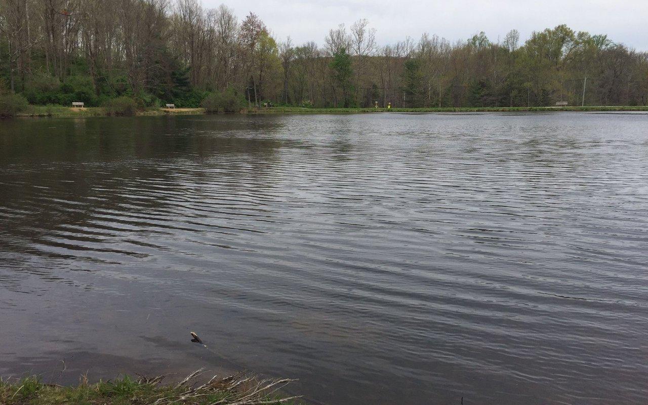 AWAYN IMAGE Lewis Morris County Park Trails