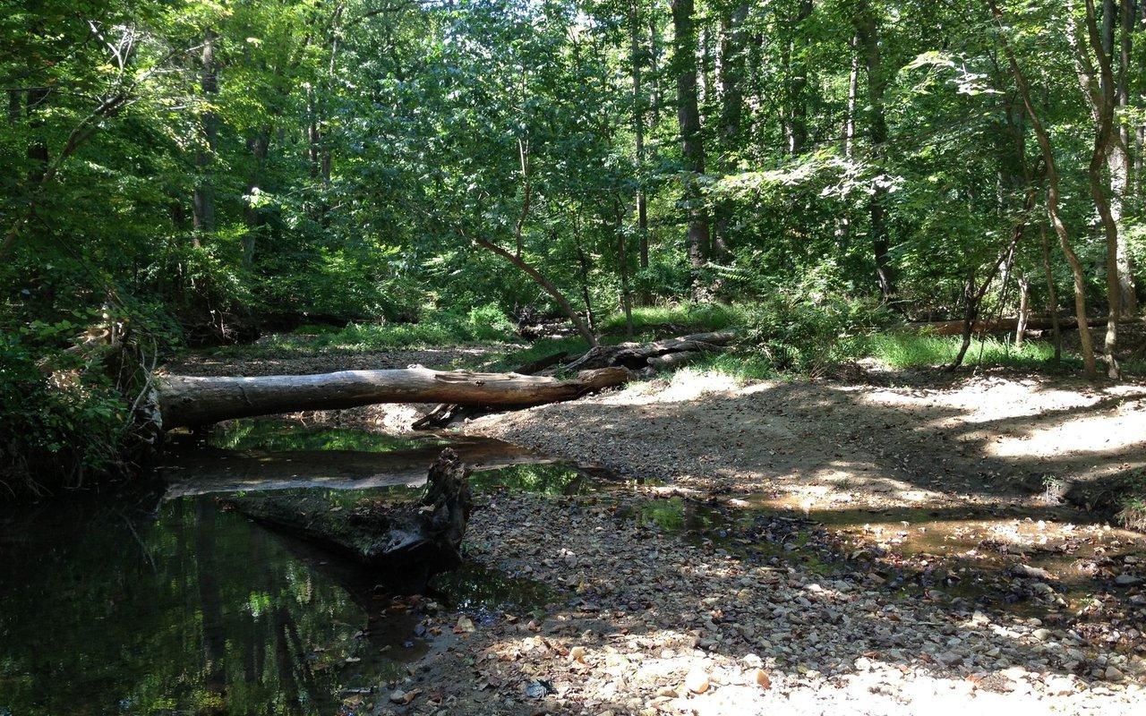 AWAYN IMAGE Rock Creek Trails