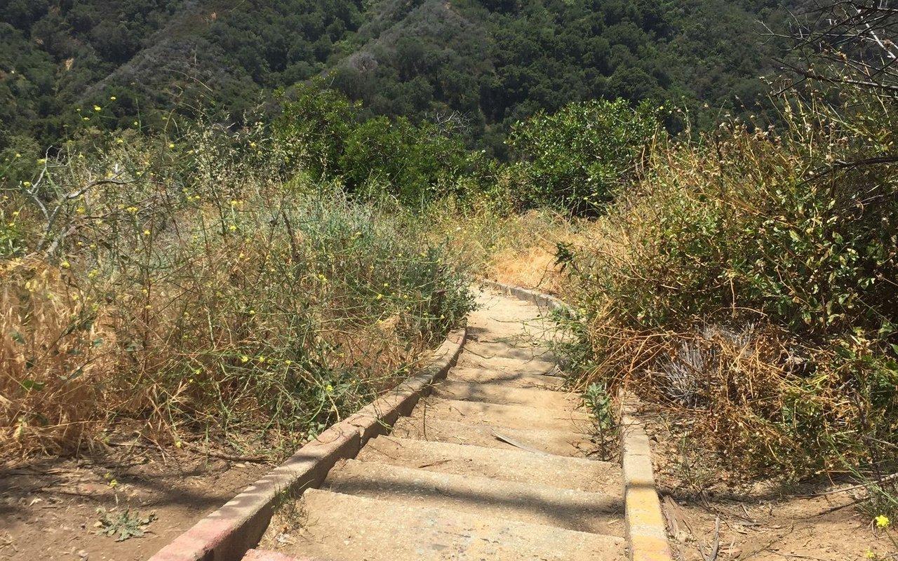 AWAYN IMAGE Murphy Ranch Trail Pacific Palisades
