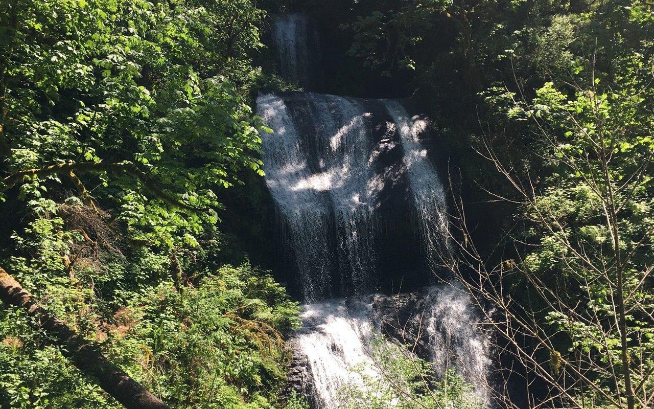 AWAYN IMAGE McDowell Creek Falls