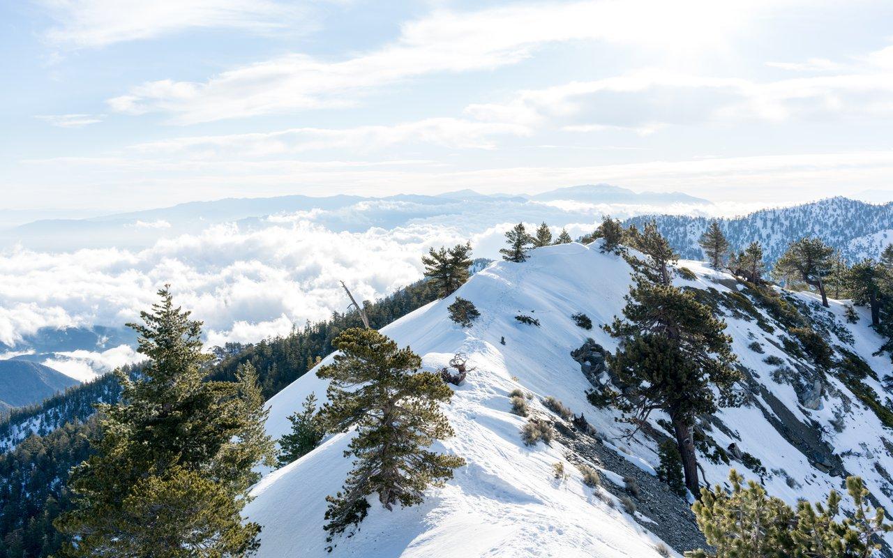 AWAYN IMAGE Mt. Baldy Ski Area (Mount Baldy)