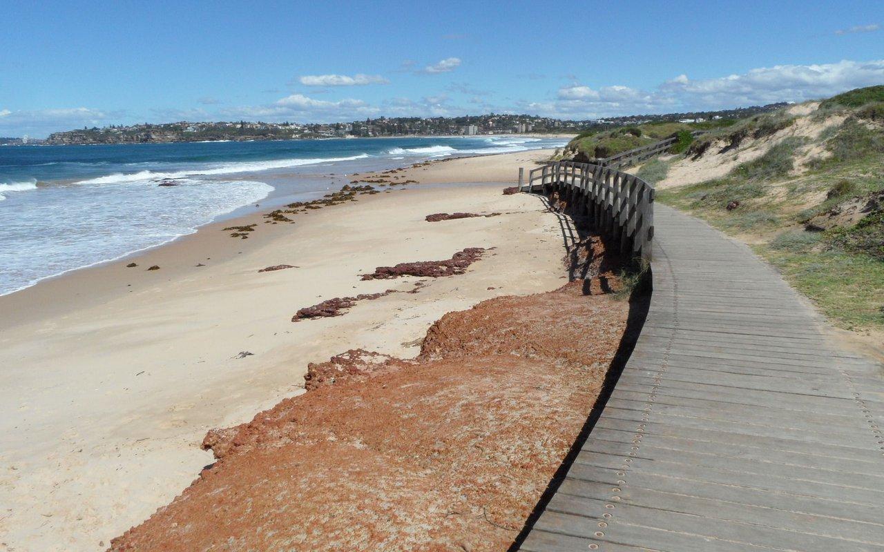 AWAYN IMAGE Long Reef Coastal Walk Collaroy to Manly
