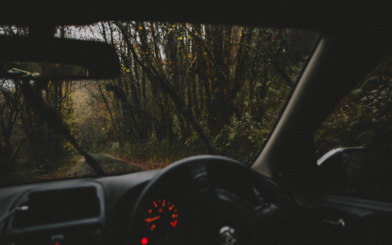 AWAYN IMAGE Drive thru Bourne Wood, Farnham