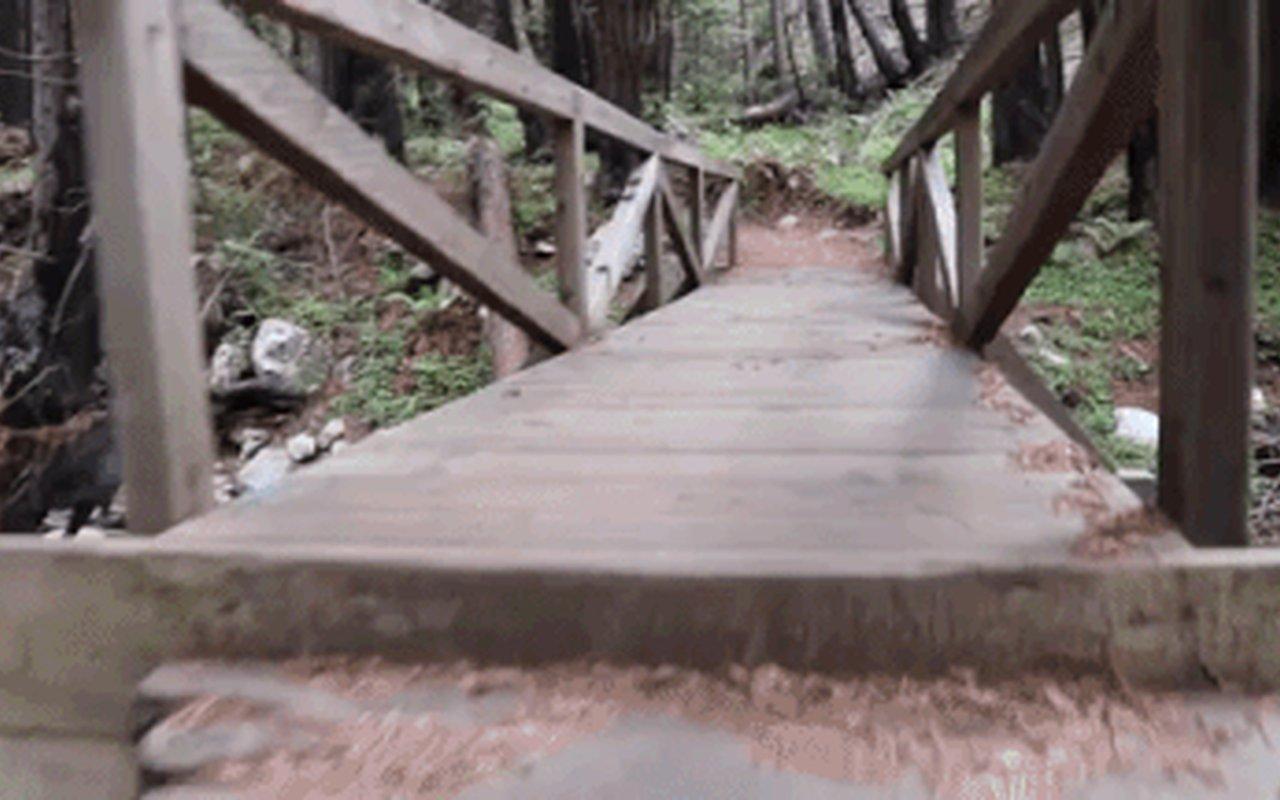AWAYN IMAGE Limekiln Beach State Park