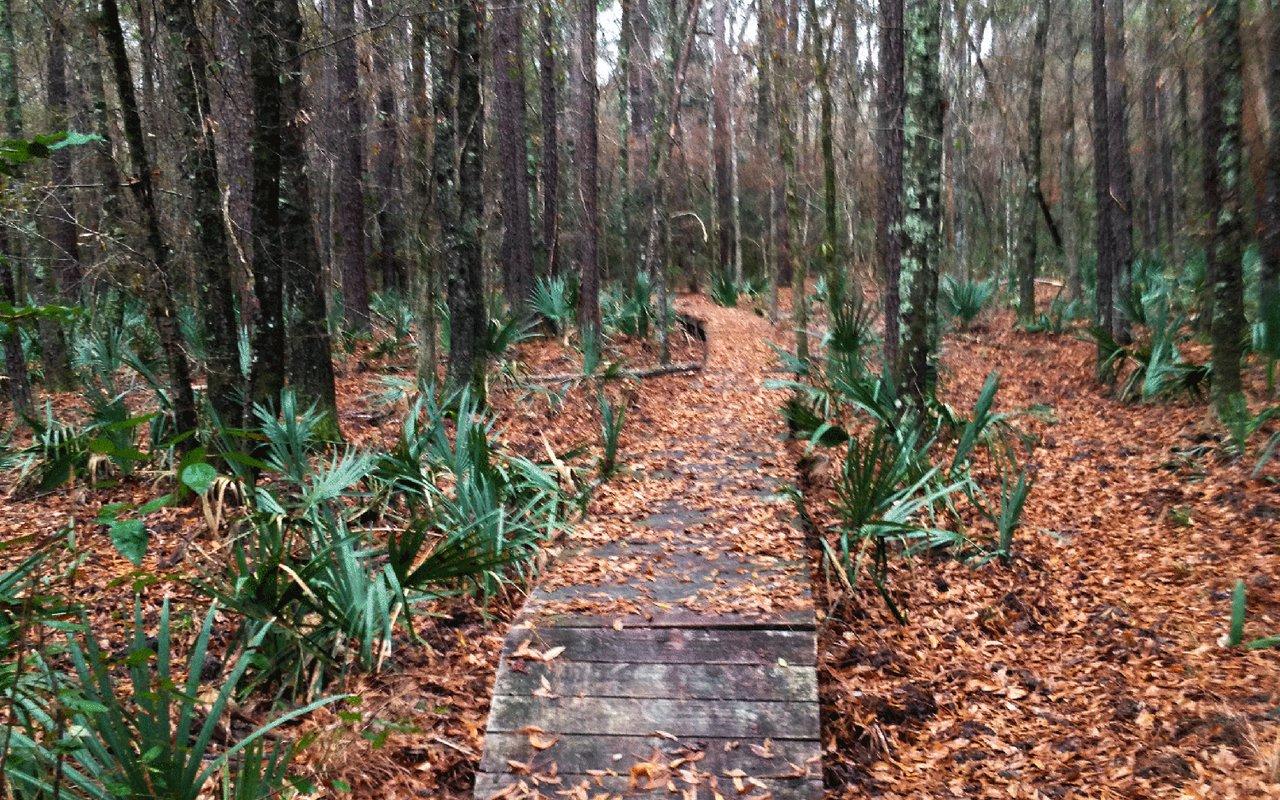 AWAYN IMAGE Winters Bayou Trail