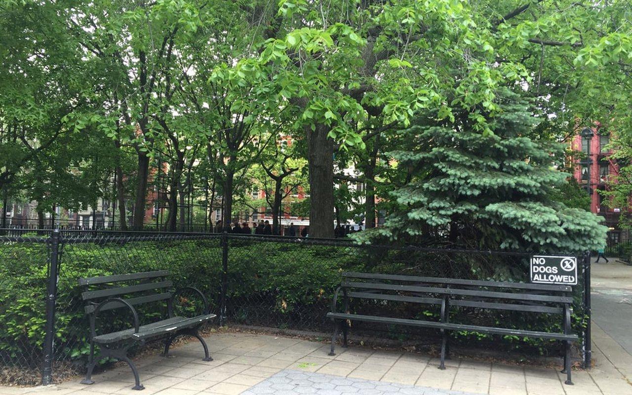 AWAYN IMAGE Walk around Tompkins Square Park