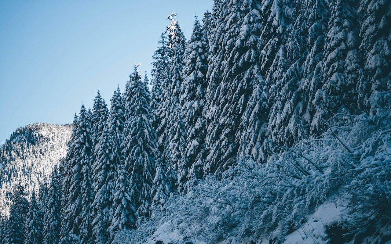 AWAYN IMAGE Snoqualmie Pass