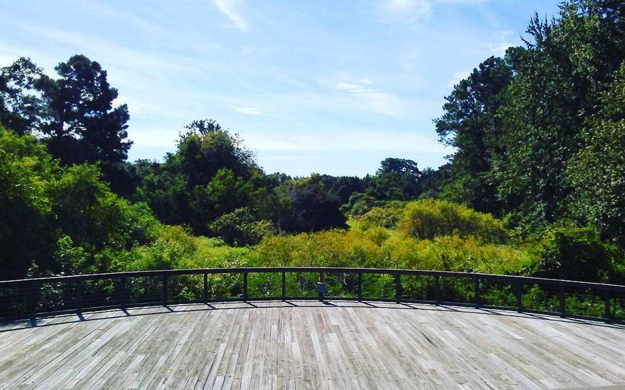 AWAYN IMAGE Cypress Wetland Loop
