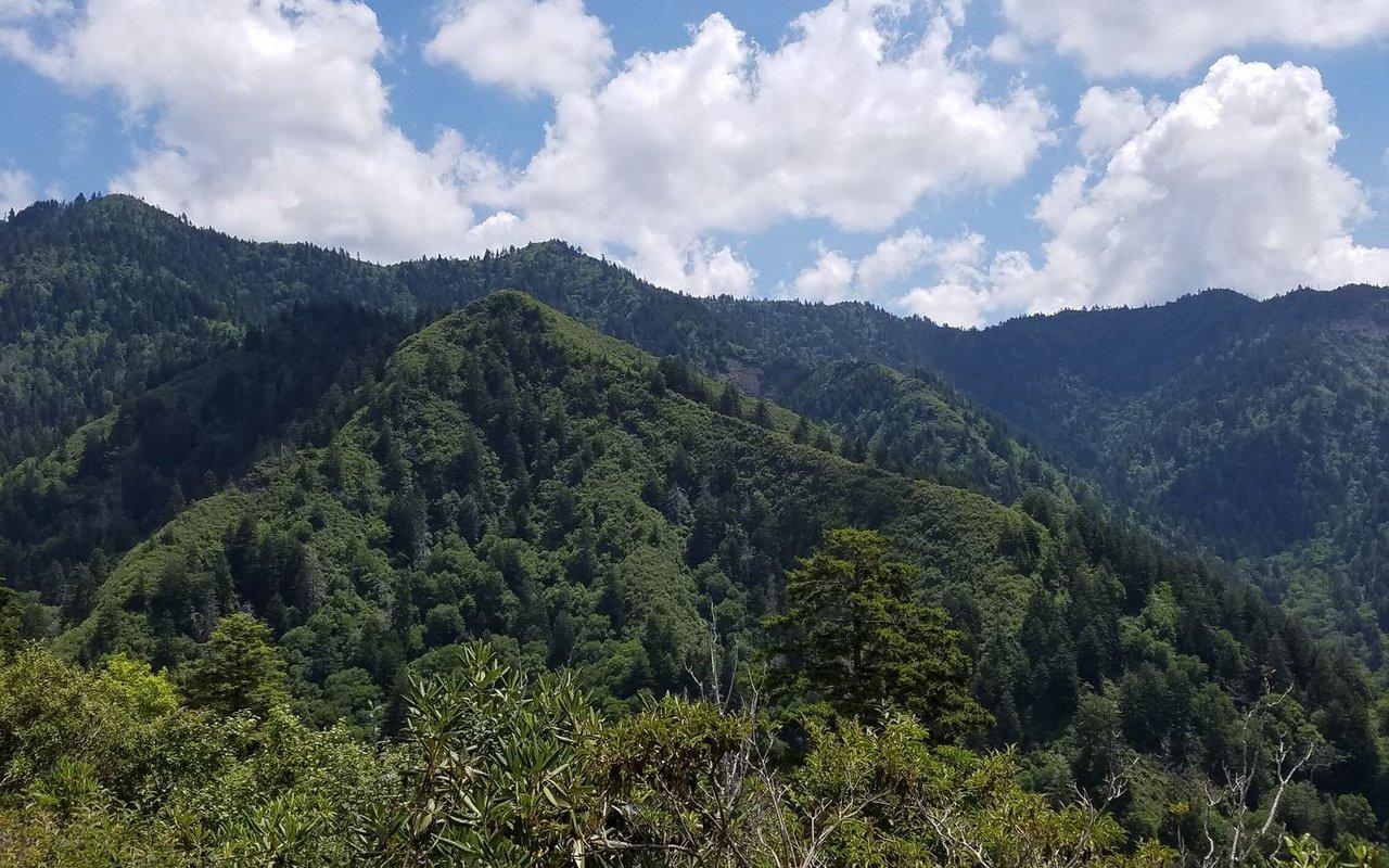 AWAYN IMAGE Mount LeConte Trail